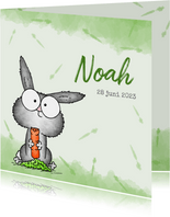 Geboortekaartje groen - Lief klein konijntje