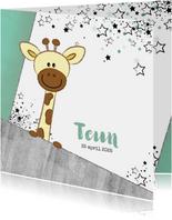 Geboortekaartje hip stoer kaartje met giraffe en sterren