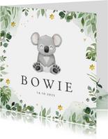 Geboortekaartje jongen koala jungle bloemen lief