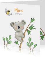 Geboortekaartjes - Geboortekaartje jongen koala