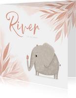 Geboortekaartje jungle blaadjes met olifant en vogel