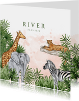 Geboortekaartje jungle dieren waterverf roze