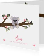 Geboortekaartje koala aan een tak illustratie