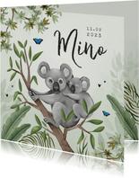 Geboortekaartje koala jungle baby groen vlinders