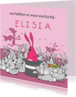 Geboortekaartjes - Geboortekaartje konijntjes roze