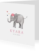 Geboortekaartje lief met geïllustreerd olifantje