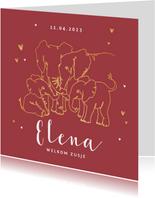 Geboortekaartje meisje olifant dieren zusje broertje goud