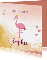 Geboortekaartje met flamingo illustratie en waterverf