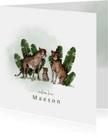 Geboortekaartje met groene waterverf en luipaarden