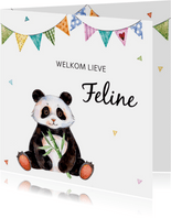Geboortekaartje met lieve panda
