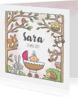 Geboortekaartje met meisje in bos met dieren