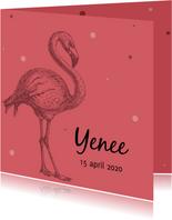 Geboortekaartje met mooie flamingo