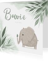 Geboortekaartje olifant met vogel en groene jungle blaadjes