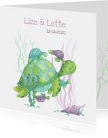 Geboortekaartje schildpadjes meerling