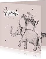 Geboortekaartje stokstaartje olifant leeuw zebra jungle