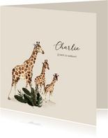 Geboortekaartje tweede kindje met getekende giraffen