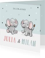 Geboortekaartje tweeling broertje zusje olifantjes