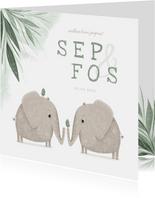 Geboortekaartje tweeling jongens met olifantjes en vogels