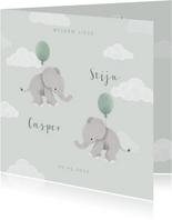 Geboortekaartje tweeling met olifantjes en ballonnen