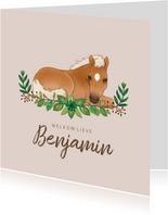 Geboortekaartje veulentje paardje met bladeren