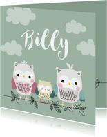 Geboortekaartje voor een jongen met uilenfamilie