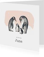 Geboortekaartje winter pinguins tweede kindje
