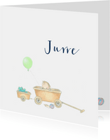 Geboortekaartjes - Baby in bolderwagen