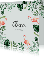 Geburtskarte Flamingo botanisch