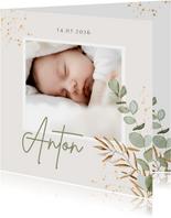 Geburtskarte Foto und Zweige