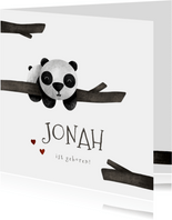 Geburtskarte Pandabär Junge/Mädchen