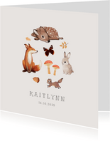 Geburtskarte Wildtiere Foto innen