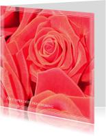 Condoleancekaarten - Gecondoleerd VII