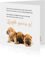 Gedichtenkaart met 3 lieve hondjes