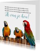 Gedichtenkaart met papegaaien