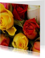 Gekleurde rozen Anet Fotografie
