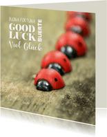 Gelukskaart met rode lieveheersbeestjes van hout