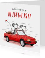 Geslaagd kaart - Rijbewijs muizen in sportauto