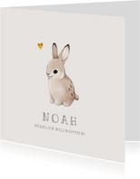 Glückwunschkarte zur Geburt Baby Kaninchen