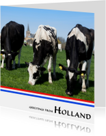 Greetings from Holland VIII