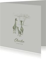 Groen geboortekaartje jungle drie giraffen getekend