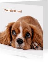 Grußkarte 'Du fehlst mir' mit Hund