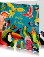 Happy Birdday! kleurrijke vogel felicitatiekaart