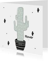 Hip geboortekaartje cactus mint