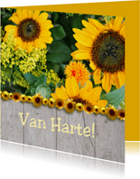 Hout zonnebloemen
