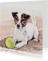 Dierenkaarten - Jack Russell met tennisbal