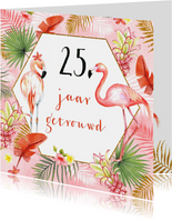 Jubileum flamingostel