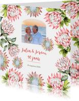 Jubileum protea tropisch