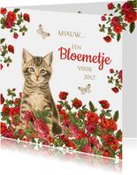 Kaart met kitten miauw een bloemetje voor jou