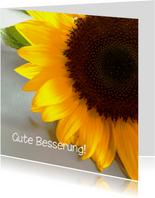 Karte gute Besserung Sonnenblume