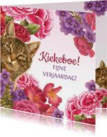 Kat zegt kiekeboe vanuit de bloemenstruik